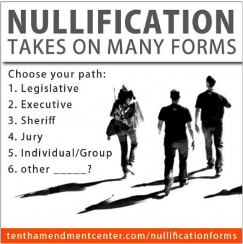 Nullification An Overview Of Its Many Forms Radiofreedom